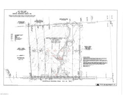 Photo of Lot 2 State Route 44, Lot 2, Mantua, OH 44255 (MLS # 4028263)