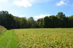 Photo of Parcel ABC New Milford Rd, Randolph, OH 44201 (MLS # 4039272)