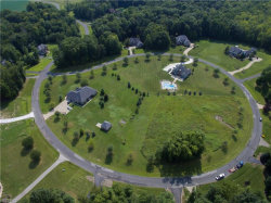 Photo of Lot 19 Rolling Meadows Dr, Lot 19, Garrettsville, OH 44231 (MLS # 4052983)