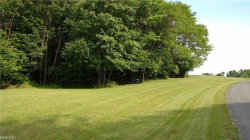 Photo of Lot 1 11254 Rolling Meadows Dr, Lot 1, Garrettsville, OH 44231 (MLS # 4054156)
