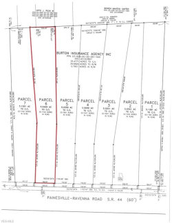 Photo of Lot 6 State Route 44, Lot 6, Mantua, OH 44255 (MLS # 4056644)