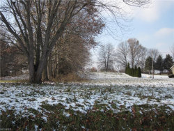 Photo of Lot 4 Southeast Industry, Rootstown, OH 44272 (MLS # 4057638)