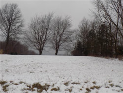 Photo of 4822 Kennedy Rd, Lowellville, OH 44436 (MLS # 4064607)
