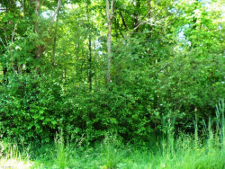 Photo of Wolforth Ave, Ravenna, OH 44266 (MLS # 4068007)