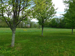 Photo of 24 Olde Charted Trl, Lot 24, Poland, OH 44514 (MLS # 4095274)