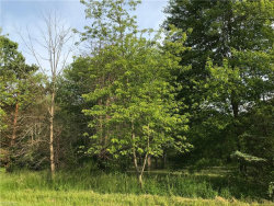 Photo of Campbellsport Rd, Rootstown, OH 44266 (MLS # 4101852)