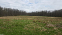 Photo of Rootstown Rd, Rootstown, OH 44272 (MLS # 4123470)