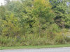 Photo of Turkey Run Dr, Vienna, OH 44473 (MLS # 4138362)