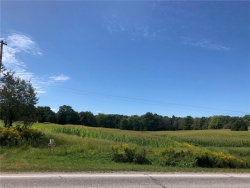 Photo of State Route 534, Middlefield, OH 44062 (MLS # 4143621)