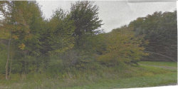 Photo of State Route 82, Lot 30E, Hiram, OH 44234 (MLS # 4157855)
