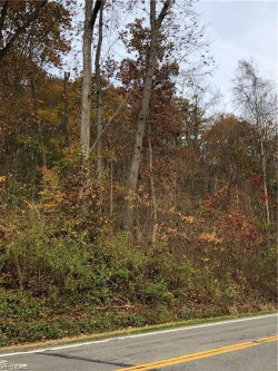 Photo of Youngstown Lowellville Rd, Lot 729, Lowellville, OH 44436 (MLS # 4187108)