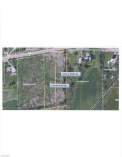 Photo of State Route 303, Ravenna, OH 44266 (MLS # 4202018)