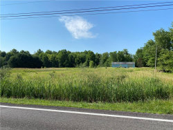 Photo of 5632 State Route 88, Kinsman, OH 44428 (MLS # 4202229)