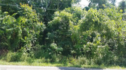 Photo of Lot 54 New Rd, Lot 54, Austintown, OH 44515 (MLS # 4204003)
