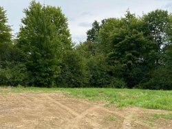Photo of 603 South Raccoon Rd, Lot 21, Austintown, OH 44515 (MLS # 4217984)