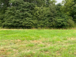 Photo of 603 South Raccoon Rd, Lot 24, Austintown, OH 44515 (MLS # 4217988)