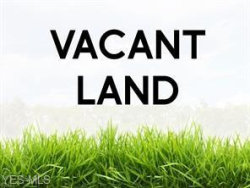 Photo of Off Mc Aly, Lot 3696 and 3695, Campbell, OH 44405 (MLS # 4237027)