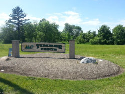 Photo of Timber Pointe Trl, Mantua, OH 44255 (MLS # 3626235)