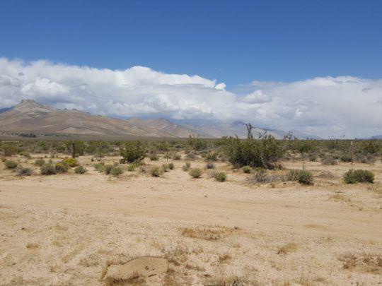 Photo for Inyokern, CA 93527 (MLS # 1953340)