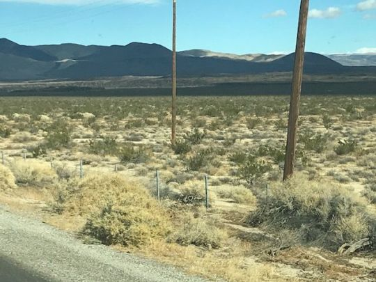 Photo for Pearsonville, CA 93527 (MLS # 1953928)
