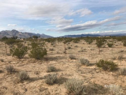 Tiny photo for Inyokern, CA 93527 (MLS # 1954275)