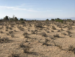 Tiny photo for 455-070-31 Jacks Ranch Rd, Ridgecrest, CA 93555 (MLS # 1954785)