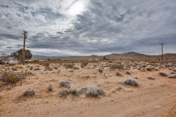 Tiny photo for Ridgecrest, CA 93555 (MLS # 1955447)
