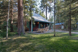 Photo of 1003 Woody Drive, McCall, ID 83638 (MLS # 525786)