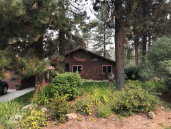 Photo of 781 Chad Loop, McCall, ID 83638 (MLS # 526127)