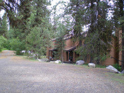 Photo of 1160 Meadows Road, Unit 4, McCall, ID 83638 (MLS # 527399)