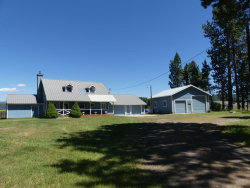 Photo of 12778 Old Hwy 55, Donnelly, ID 83615 (MLS # 527528)
