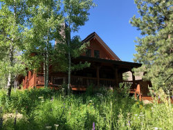 Photo of 252 Discovery Drive, Tamarack, ID 83615 (MLS # 527577)