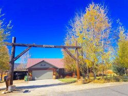 Photo of 1095 Ridge Road, McCall, ID 83638 (MLS # 528107)