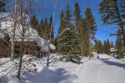 Photo of 62 Twin Creek Court, Tamarack, ID 83615 (MLS # 528530)