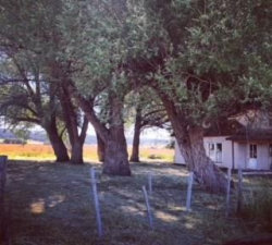 Photo of 13148 Farm To Market Road, Donnelly, ID 83615 (MLS # 528664)