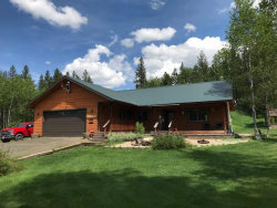 Photo of 13828 Shadow Ridge Drive, McCall, ID 83638 (MLS # 528677)