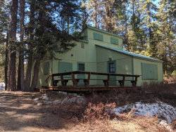 Photo of 2113 Payette Drive, McCall, ID 83638 (MLS # 528873)