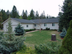 Photo of 127 Bogie Drive, Cascade, ID 83611 (MLS # 528907)