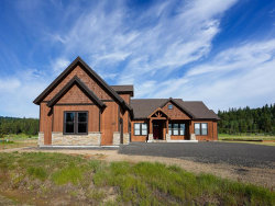 Photo of 25 Arnica Court, McCall, ID 83638 (MLS # 529355)