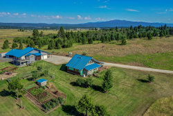 Photo of 1430 Samson Trail, McCall, ID 83638 (MLS # 529508)