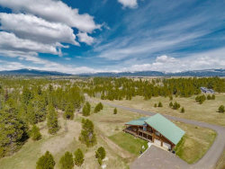 Photo of 43 Tranquility Lane, McCall, ID 83638 (MLS # 530298)