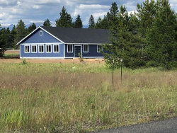Photo of 955 Valley View Lane, McCall, ID 83638 (MLS # 530791)