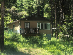 Photo of 651 West Mountain Road, Cascade, ID 83611 (MLS # 530900)