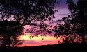 Photo of 550 Hillcrest WAY, REDWOOD CITY, CA 94062 (MLS # ML81730894)