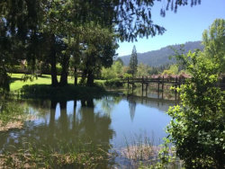 Photo of 24 Big Basin WAY, BOULDER CREEK, CA 95006 (MLS # ML81779534)