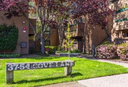 Photo of 46 Cove LN, REDWOOD CITY, CA 94065 (MLS # ML81788846)