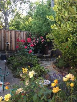 Photo of 1604 Davis DR A, BURLINGAME, CA 94010 (MLS # ML81791981)