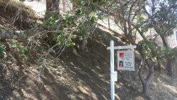 Photo of 147 Coronado AVE, SAN CARLOS, CA 94070 (MLS # 81595872)