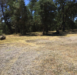 Photo of 15405 Pacific ST, CLEARLAKE, CA 95422 (MLS # 81596062)