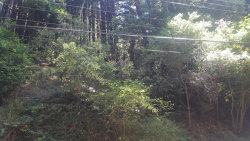 Photo of 0 Redwood DR, APTOS, CA 95003 (MLS # 81627339)